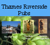 Graphic link to the Thames Riverside Pubs Module